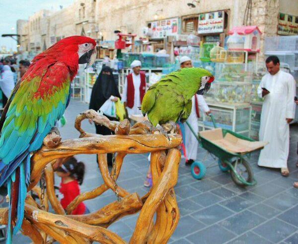 Rincón del Zoco Waqif en Doha en Qatar