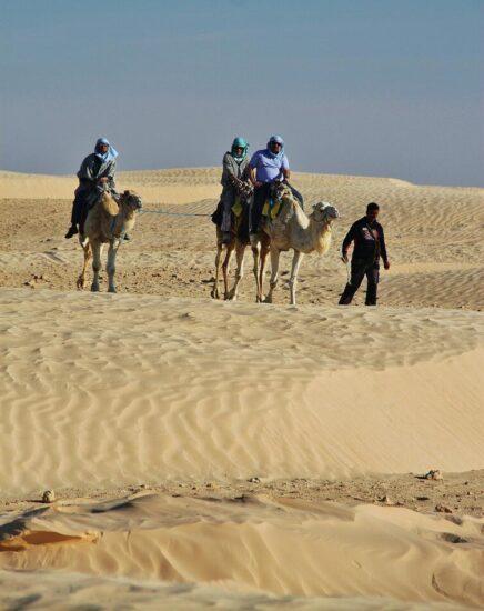 Paseo en dromedario en las dunas de Douz en Túnez