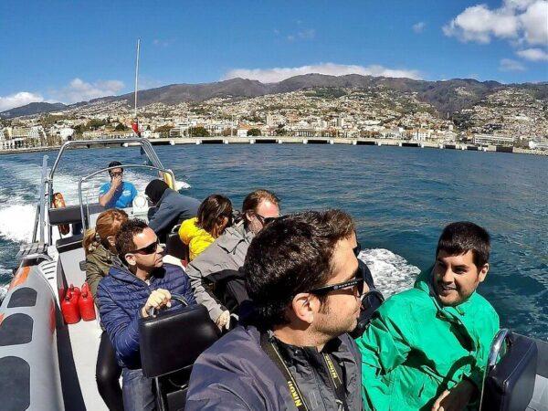 Excursión para observar ballenas en Madeira