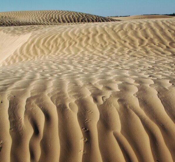 Dunas del desierto en Douz en Túnez