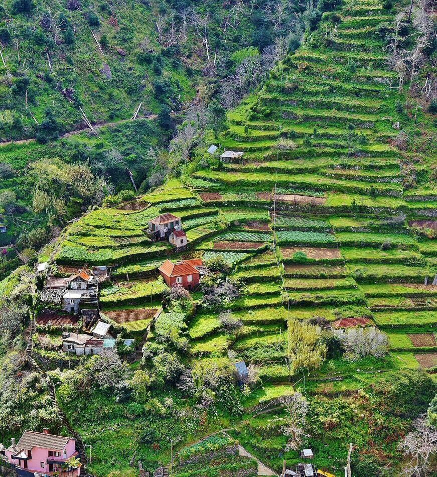 8 consejos imprescindibles para viajar a madeira gu as viajar - Que hay en portugal ...
