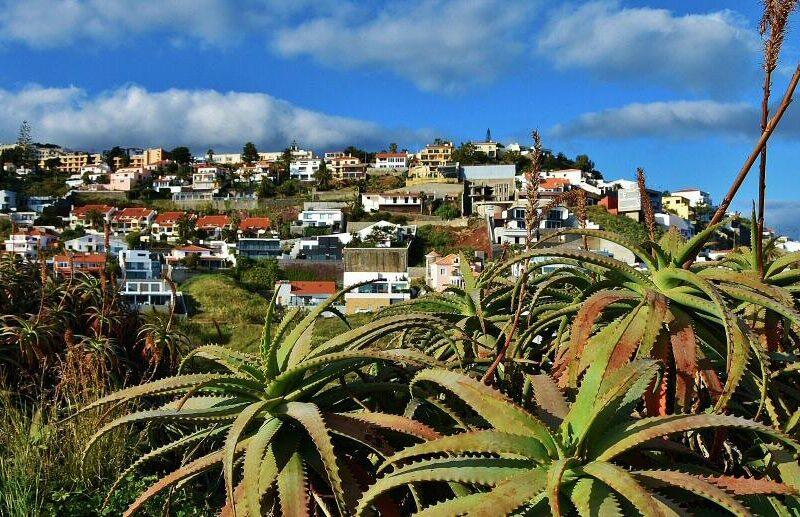 Rincón de la isla de Madeira en Portugal