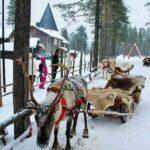 Trineo de renos en Santa Claus Village en Rovaniemi