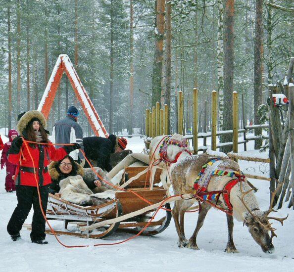 Tour en trineo de renos en Santa Claus Village en Rovaniemi