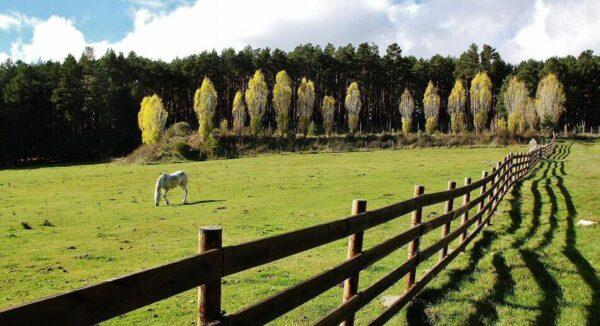Paisajes en Gredos Norte en provincia de Avila
