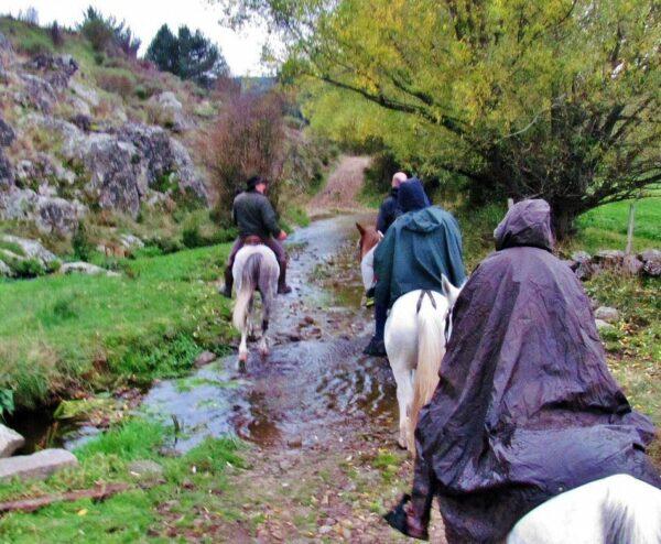 Paseo a caballo en Sierra de Gredos en Avila