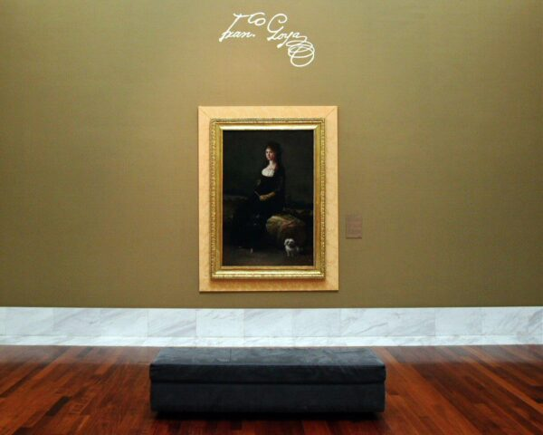 Goya en el museo de Bellas Artes de Valencia