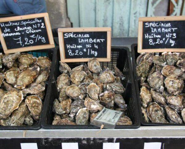 Ostras de Oleron en el mercado de La Rochelle