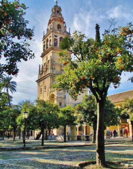 Patio de los Naranjos en la Mezquita de Córdoba