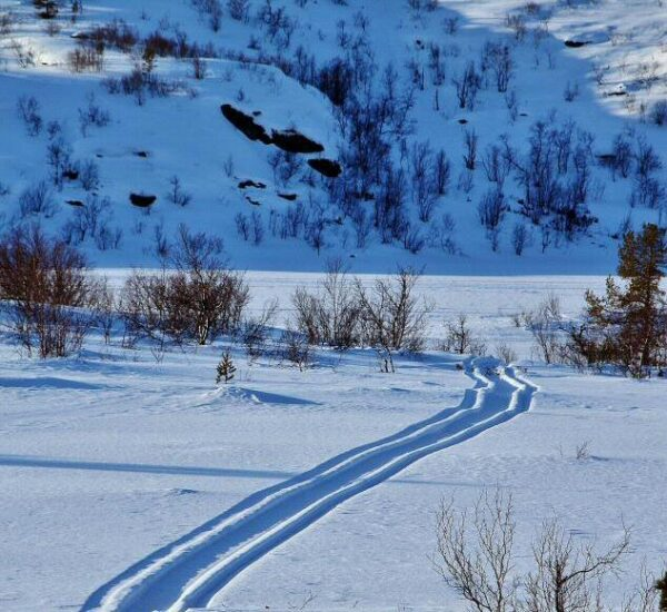 Paisajes nevados en Kirkenes al norte de Noruega