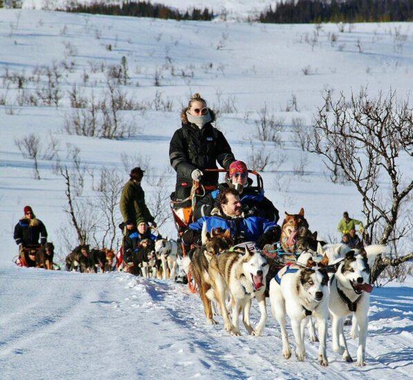 Trineo de perros en Tromso en Laponia Noruega