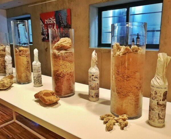 Cata de vinos en Celler de Capaçanes en el Priorat