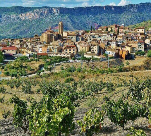 Viñedos en Gratallops en Priorat en Tarragona