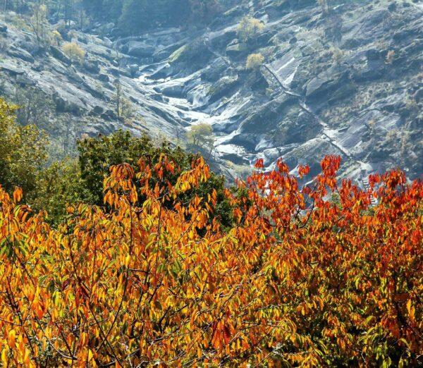 Los Pilones en otoño en el Valle del Jerte