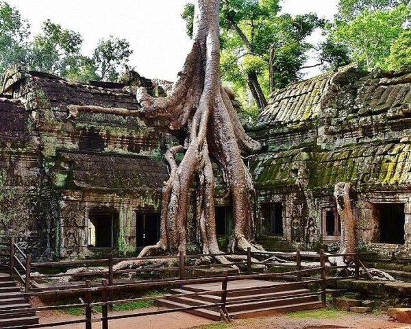 Templo de Ta Prohm en Angkor en Camboya