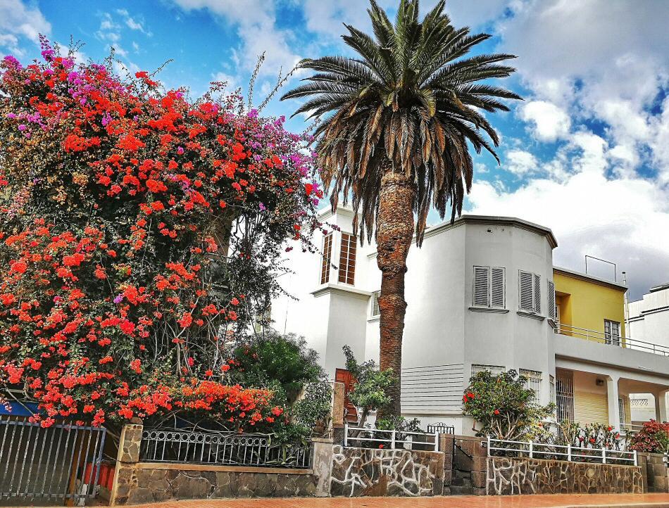 Qu ver en las palmas gran canaria gu as viajar for Casas en ciudad jardin las palmas