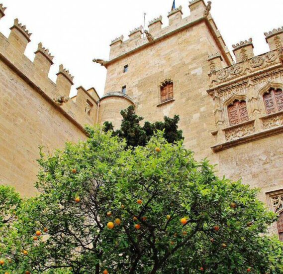 Consulado del Mar en la Lonja de la Seda en Valencia