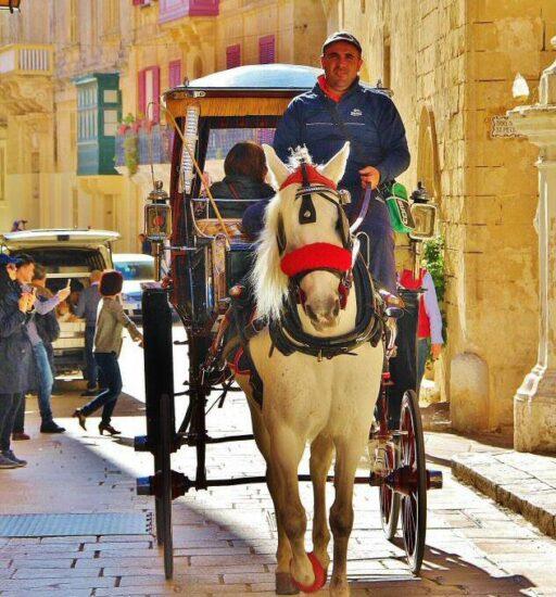 Carruaje con turistas en Mdina en Malta
