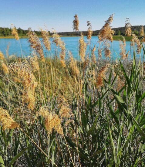 Lagunas de Ruidera en Ciudad Real en Castilla-La Mancha