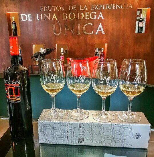 Bodegas Mocén en Rueda en Valladolid
