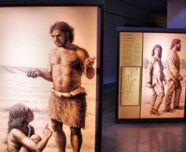 Exposición del Museo de Altamira en Cantabria