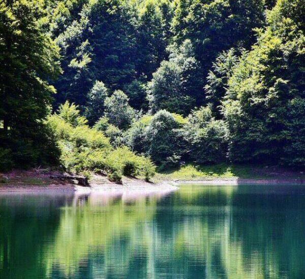 Embalse de Irabia en la Selva de Irati de los Pirineos de Navarra