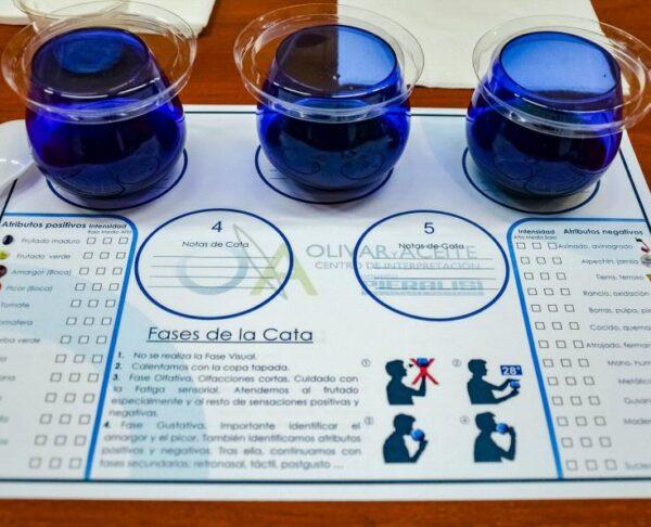 Cata de aceites en Centro del Olivar y el Aceite en Úbeda