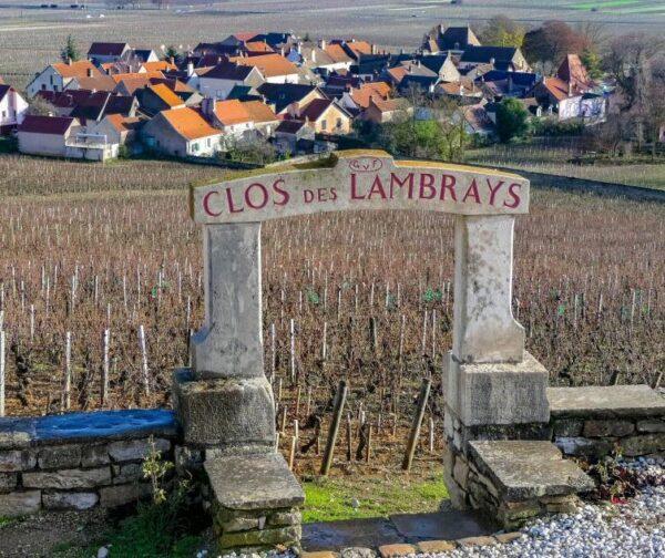 Viñedos de Borgoña cerca de Dijon