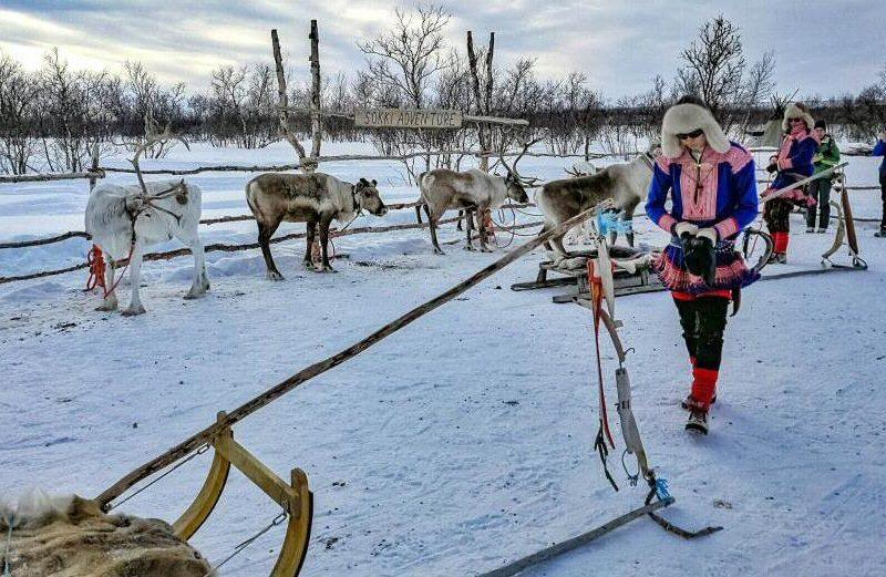 Experiencia Sami en Kautokeino al norte de Noruega