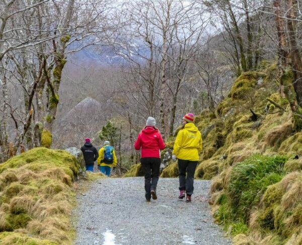 Senderismo en Sundal en Fiordo Hardanger en Noruega