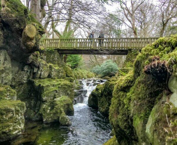 Parque Forestal de Tollymore, escenario de Juego de Tronos en Irlanda del Norte