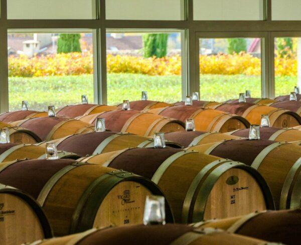 Bodegas Roda en Haro en La Rioja