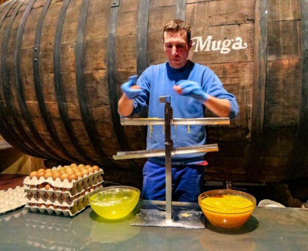 Clarificado del vino en Bodegas Muga en Haro en La Rioja