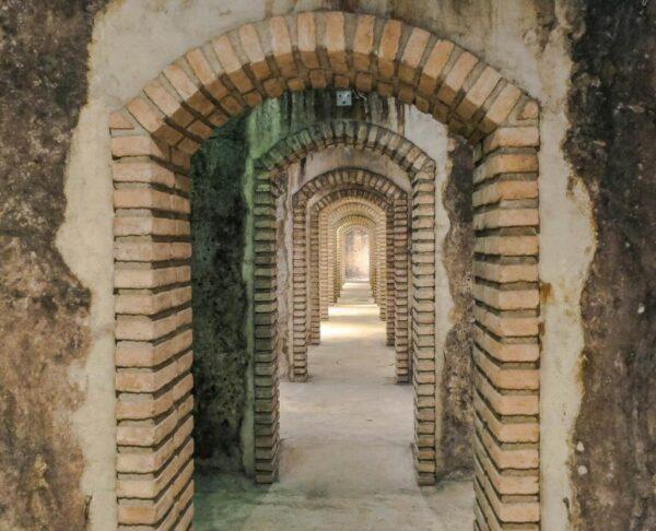Celler Masroig en Montsant en Tarragona