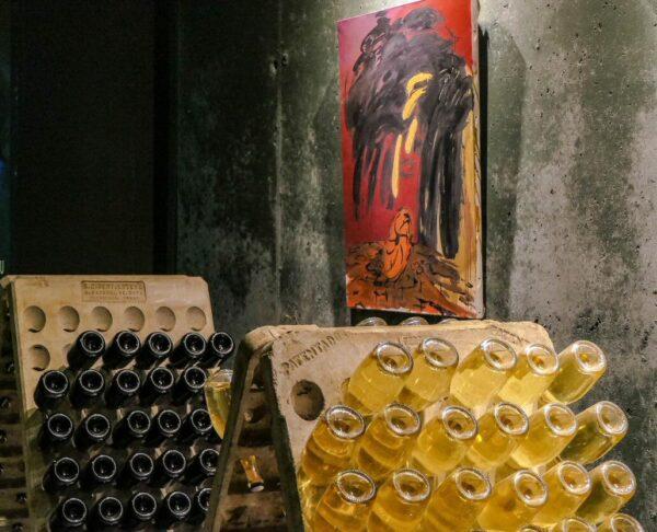 Viñedos de Caves Vilarnau en Espiells en Barcelona