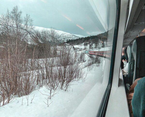 Tren de Flam en los Fiordos de Noruega