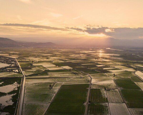 Vistas aéreas del Delta del Ebro en Tarragona