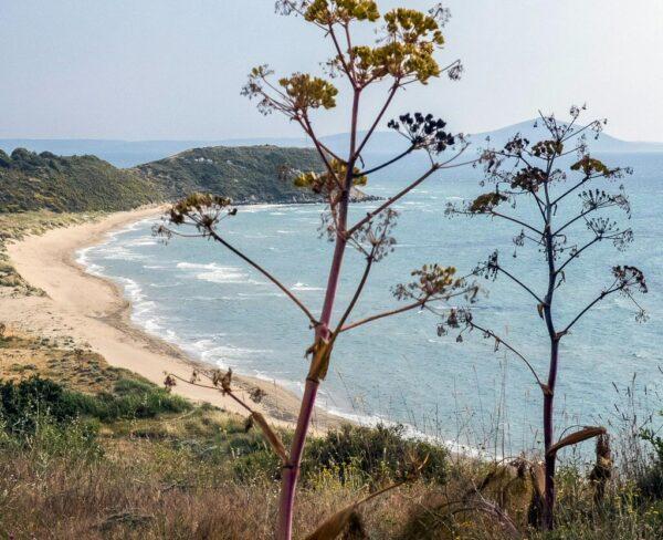 Costa cerca de Troya en Turquía