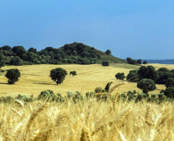 Túmulo de Aquiles en Troya en Turquía
