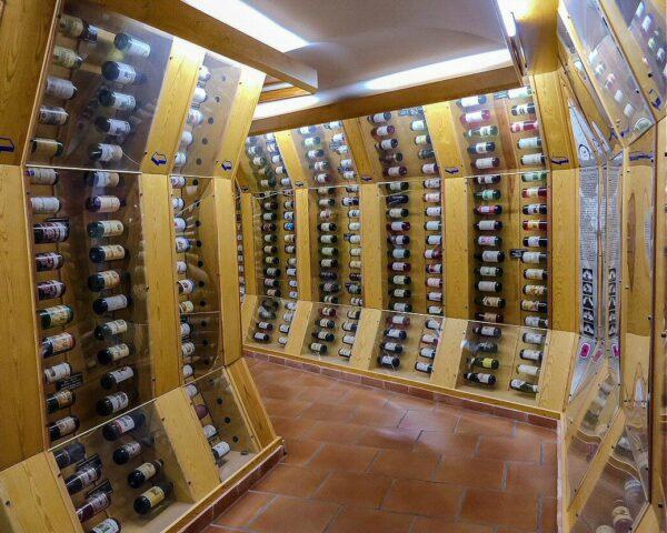 DO Vinos de La Mancha en Alcázar de San Juan